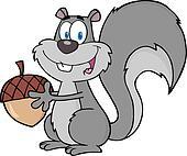 Cute Gray Squirrel Holding A Acorn