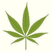 Vector cannabis leaf. Marijuana.