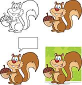 Cute Squirrel Collection Set