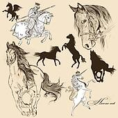 Collection of vector detailed horses for design