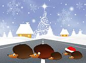 hedgehogs at Christmas
