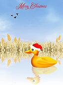 duck at Christmas