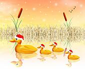 family of ducks at Christmas