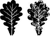 Grunge oak leaves