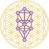 Tree Of Life Fits In Flower of Life