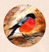 Watercolor illustration of Bullfinch