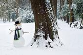 Big tree and small snowman