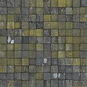 mosaic tile worn old wall floor with spurs mold