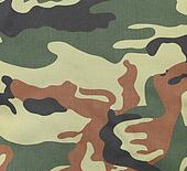 Camouflage texture pattern with green tones.