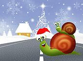 snails at Christmas