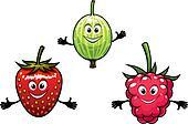 Gooseberry, raspberry and strawberry berries
