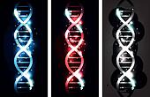 DNA banners