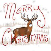 Whitetail buck Christmas