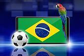 Soccer video game, brazil parrot