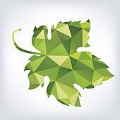 Grape green leaf in polygon style