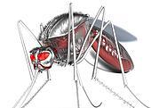 Mosquito. Robot bloodsucker