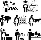 Agriculture Plantation Farming Job
