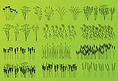 Plants, grass and flowers detailed silhouettes