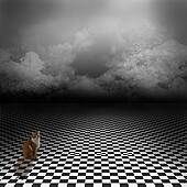 Wonderland background with cat
