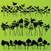 Wild nettle, rhubarb and larkspur plants detailed silhouettes illustration collection background vector