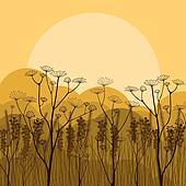Field autumn countryside landscape