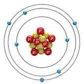 Nitrogen atom on white background