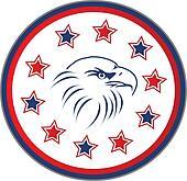 Usa eagle with stars