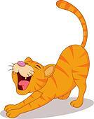 Cute cat streching