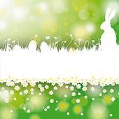 Easter Card Background White Grass Rabbit Flower Centre