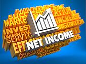 Net Income. Wordcloud Concept.
