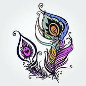 Beautiful peacock feather.