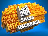 Sales Increase. Wordcloud Concept.