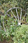 Wagon Wheel, Rustic