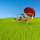 Chair in meadow.
