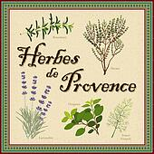 Herbes de Provence French Blend