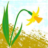 Vector card with one daffodil